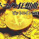 ビットコイン狂想曲:ビットコインのアウトライン(2/8)
